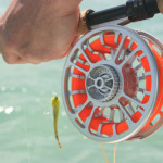 Saltwater Fly Tying for Tarpon, Bonefish, Permit, Shark, Cobia and Barracuda